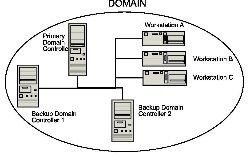 معرفی مدل شبکه ایی Domain (معرفی مقدماتی)