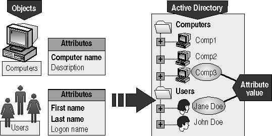 معرفی مدل شبکه ای Domain (معرفی پیشرفته)