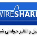 تولید نهایی آنالیز حرفه ای شبکه با WireShark (8 ساعت)
